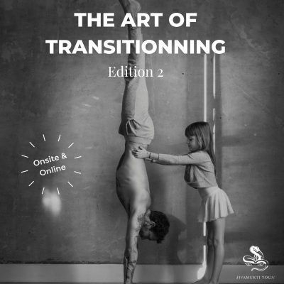 The Art of Transitioning
